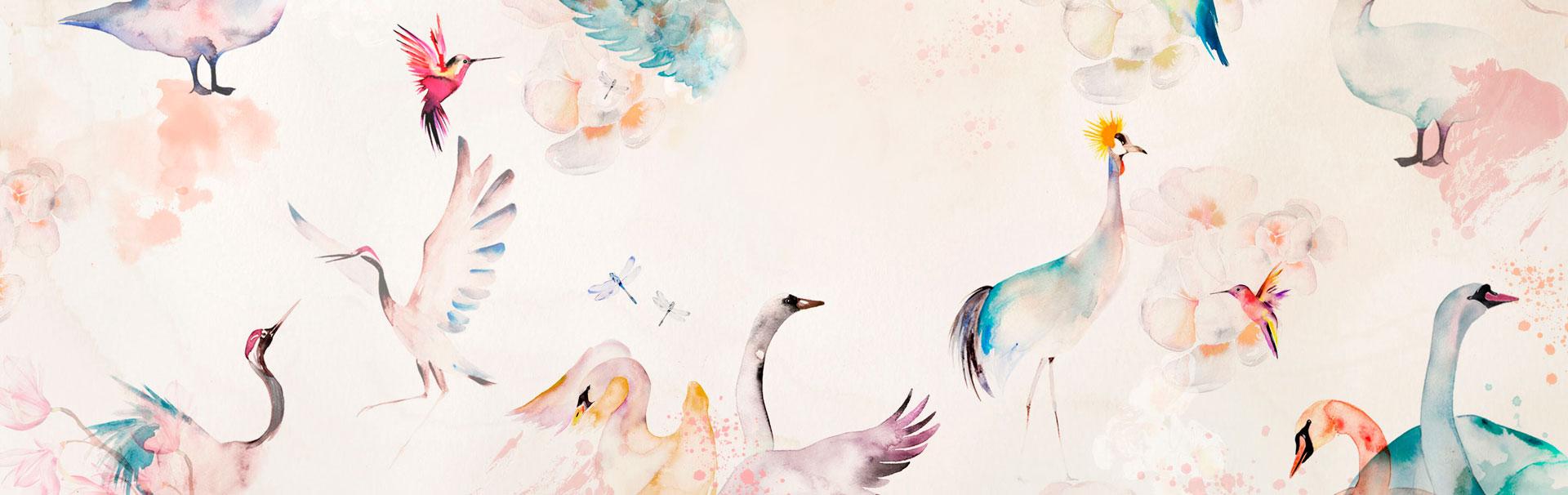 Fondo Pájaros Colores Me And Me